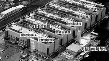 武田製薬が巨大な動物実験施設1