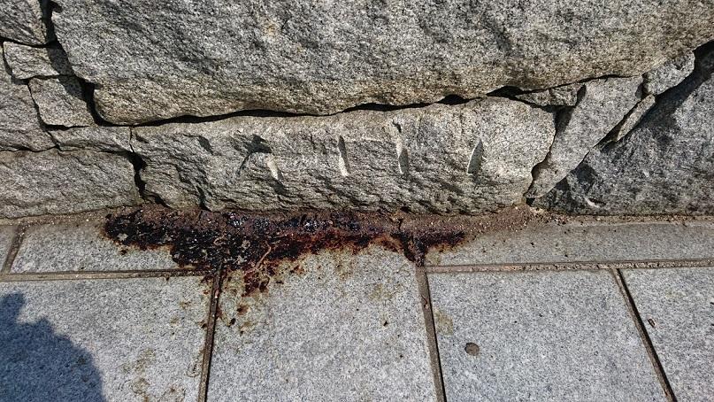 松山総合公園エントランスの血痕①
