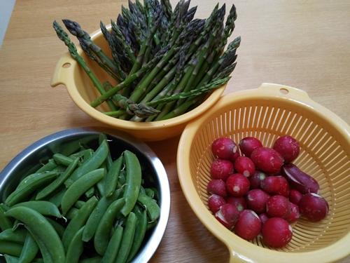 山梨の家の野菜