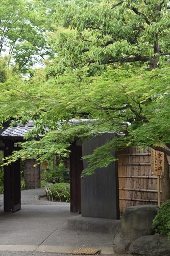 向島百花園 (2)