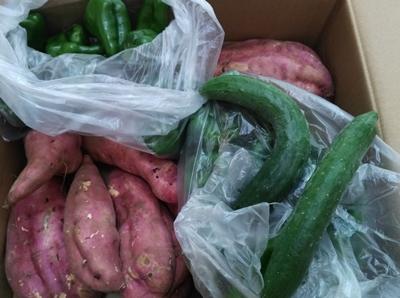 山梨から届いた野菜