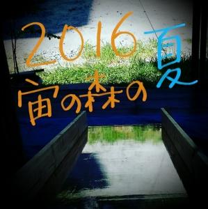 Studio_20160813_115337.jpg