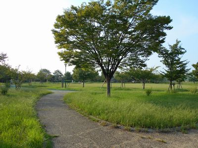 161002_巽東緑地2