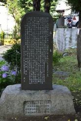 18095.jpg