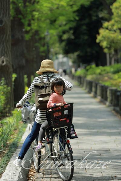 日本旅行 プーケットしまかぜ案内人