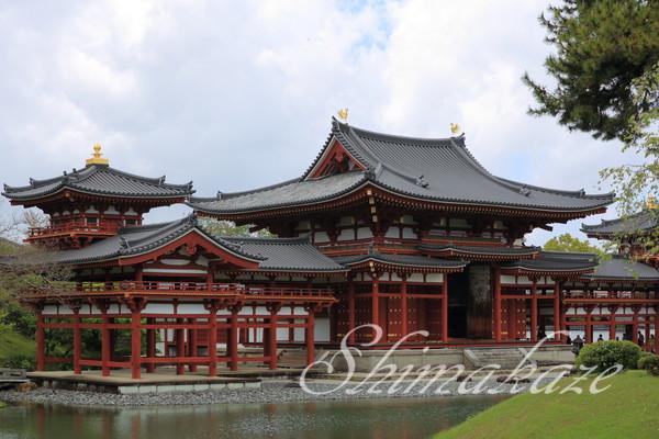 京都旅行 平等院