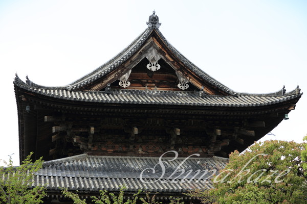 京都旅行 柊家旅館別館