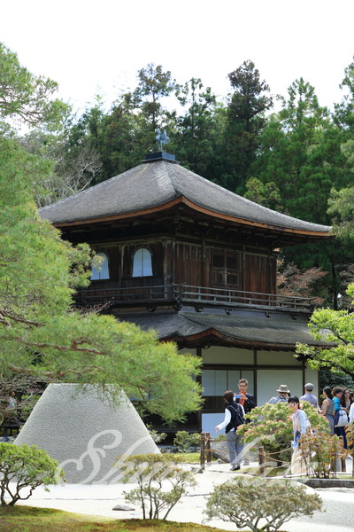 日本旅行銀閣寺プーケットしまかぜ案内人