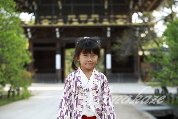 柊家旅館別館京都旅行プーケットしまかぜ案内人
