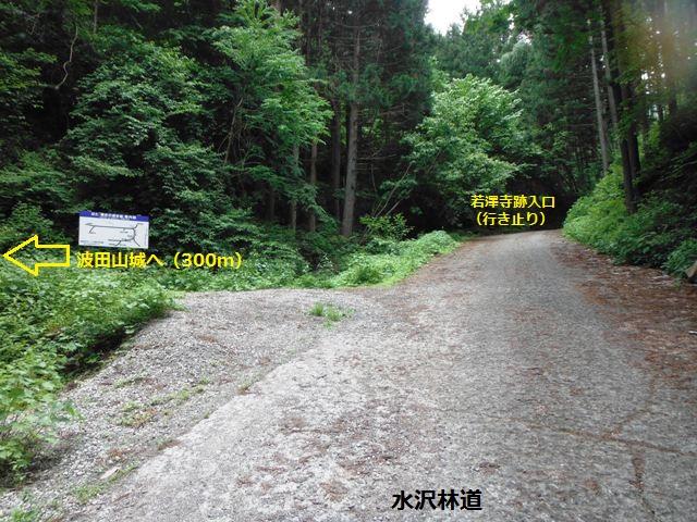 波田山城2016 (142)