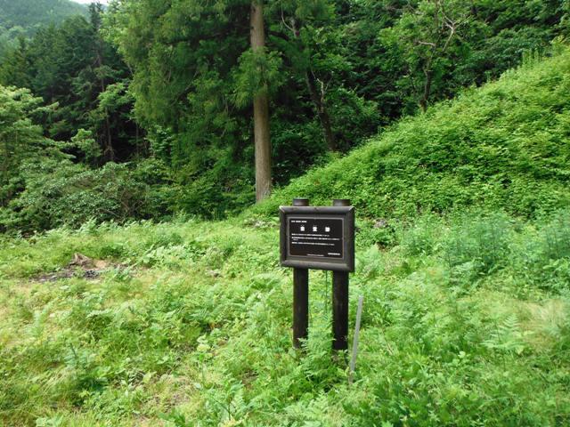 若澤寺後201606 (45)