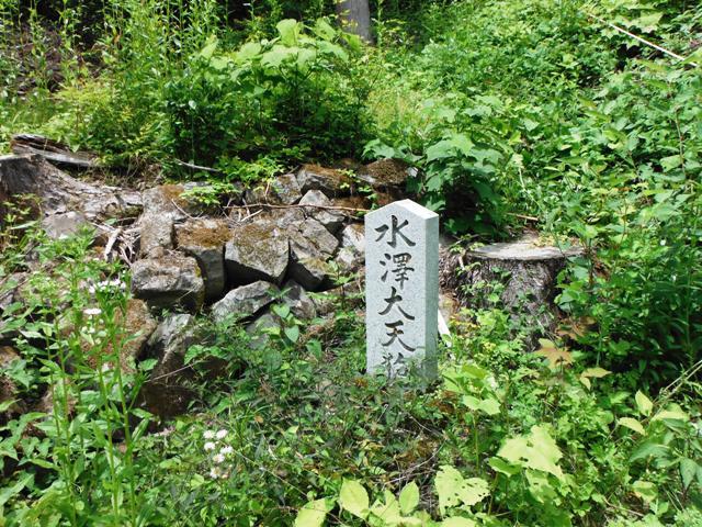 若澤寺後201606 (93)