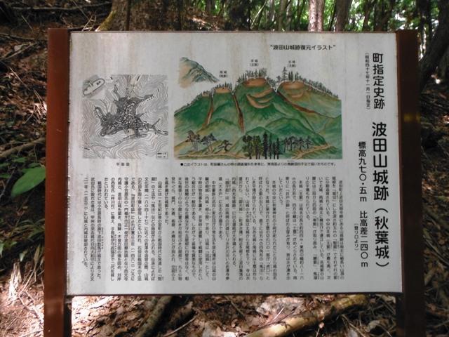 波田山城2016 (1)