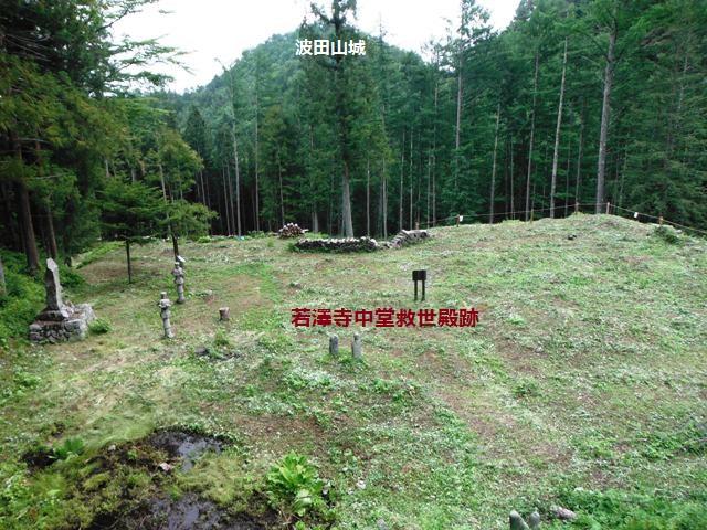 若澤寺後201606 (44)