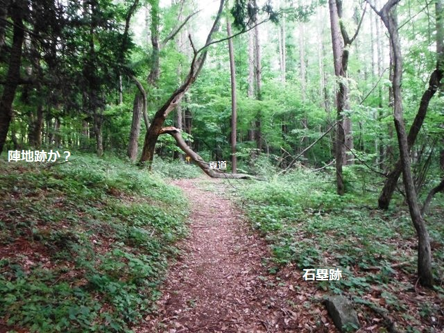 夏道の砦(松本市波田) (14)