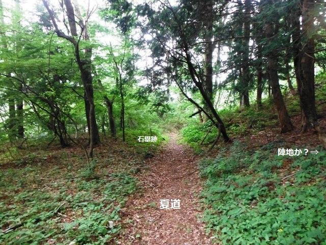 夏道の砦(松本市波田) (13)