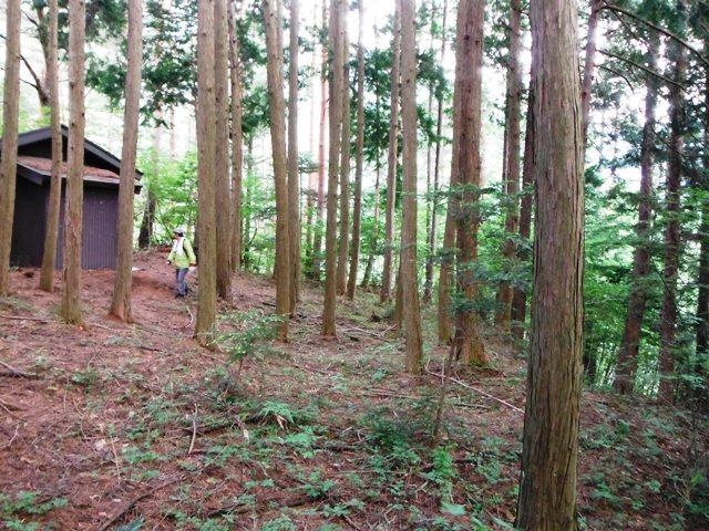 かぎかけ山物見・撞鐘堂 (32)