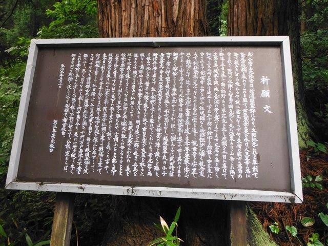 小菅山 (90)