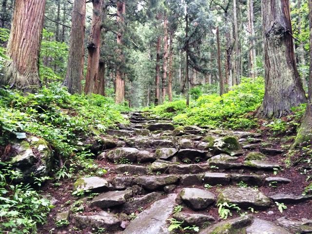 小菅山 (11)