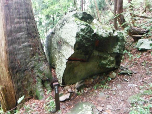 小菅山 (108)