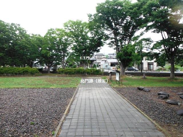 信濃国分寺跡 (12)