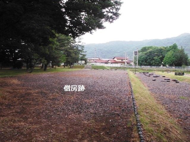 信濃国分寺跡 (48)