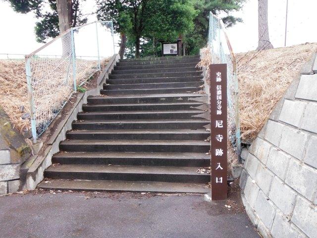 信濃国分寺跡 (89)