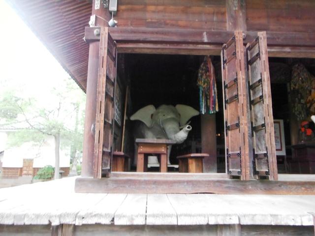 信濃国分寺跡 (116)