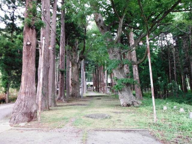 新海三社神社 (26)