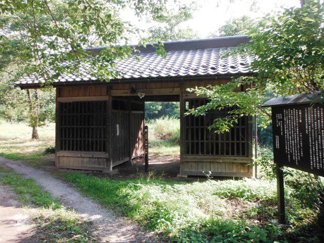 新海神社2 (70)