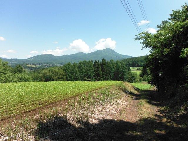 根小屋城(長野市戸隠) (6)