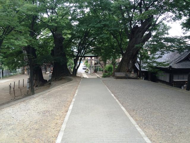 栗田城1 (12)