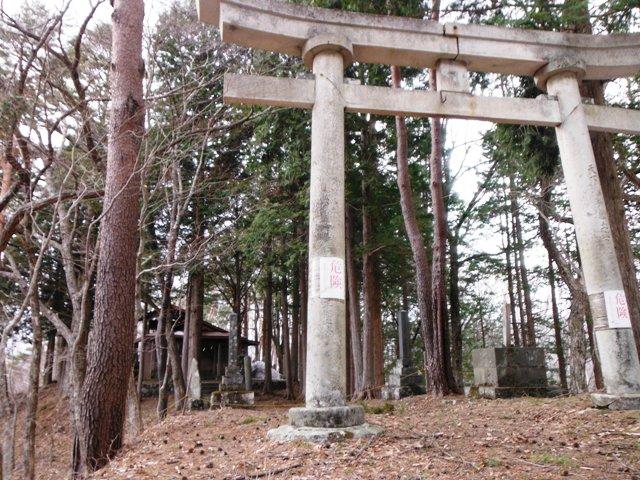 藪原砦(鳥居峠) (44)