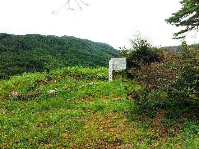 藤沢城(伊那市) (56)