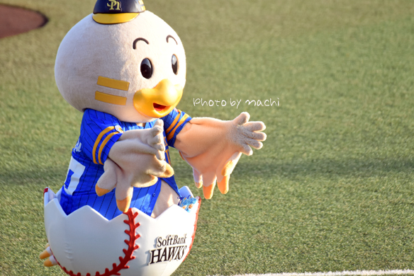 chik131.jpg