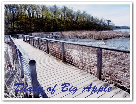 ハドソン川に遊歩道橋