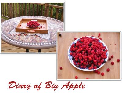 初摘みのraspberry