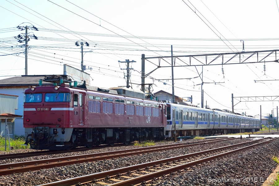 aDSC_1567.jpg