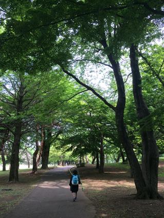 野川公園2016