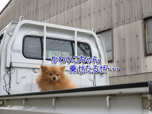 s-IMG_8333.jpg