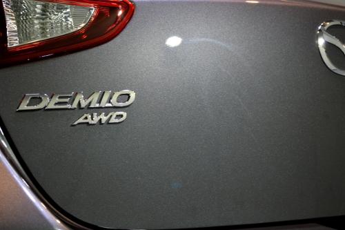 demioB02.jpg