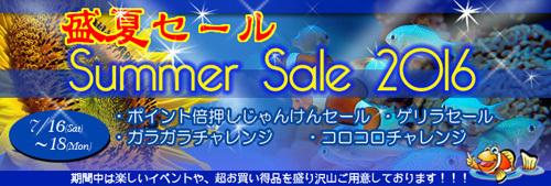 banner_summer-d449c.jpg