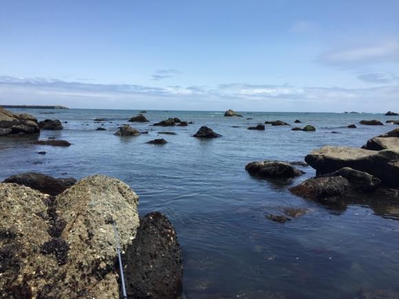 銚子釣り 一山いけす前の磯