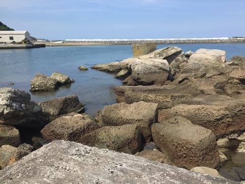 会瀬漁港メバリング