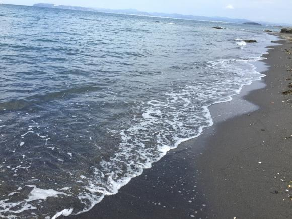 館山の海 渚