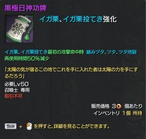 16-9-13 黒極日神功牌