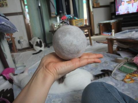 毛玉ボール