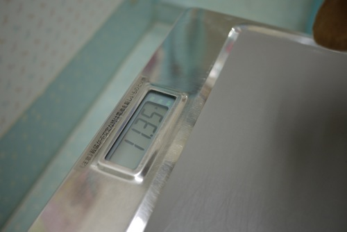 P1520022.jpg