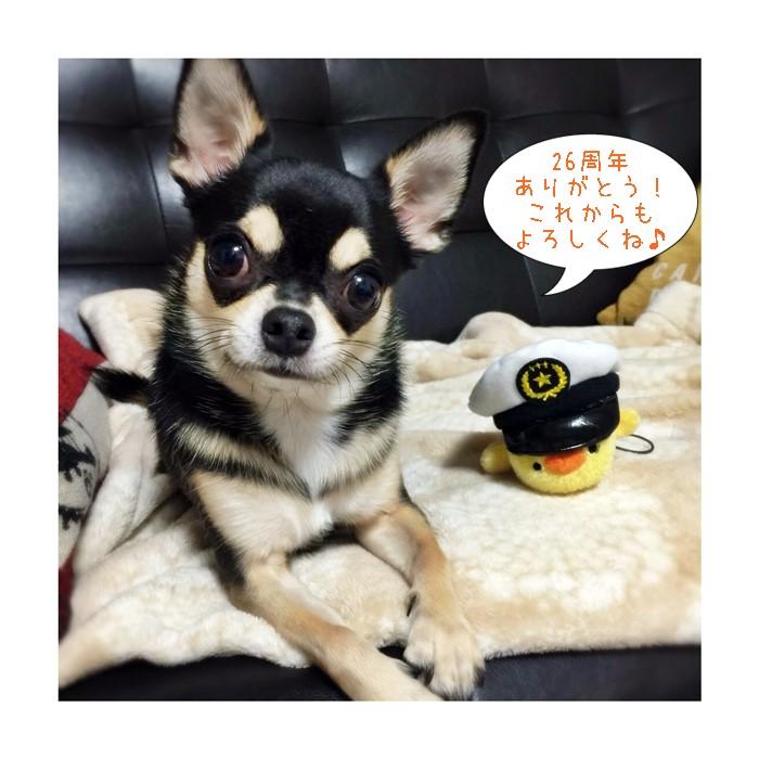 2016-09-15 ちまき 3 ブログ用