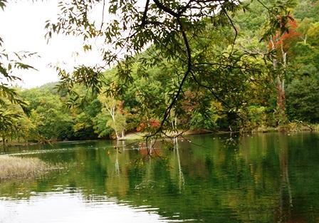 秋の鳥沼公園
